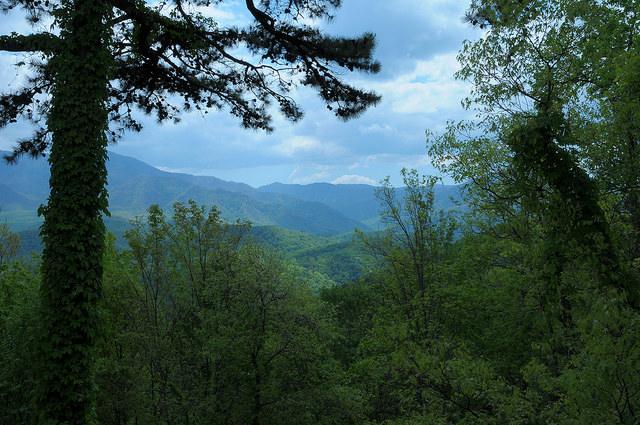 cabin mountain view