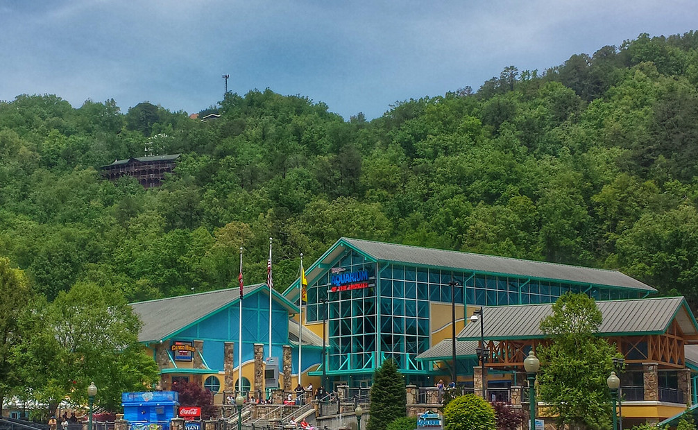 Gatlinburg Ripley's Aquarium of the Smokies