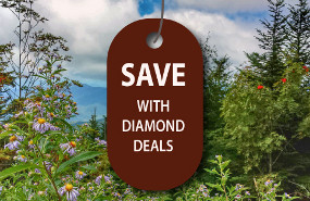 SAVE with Diamond Deals