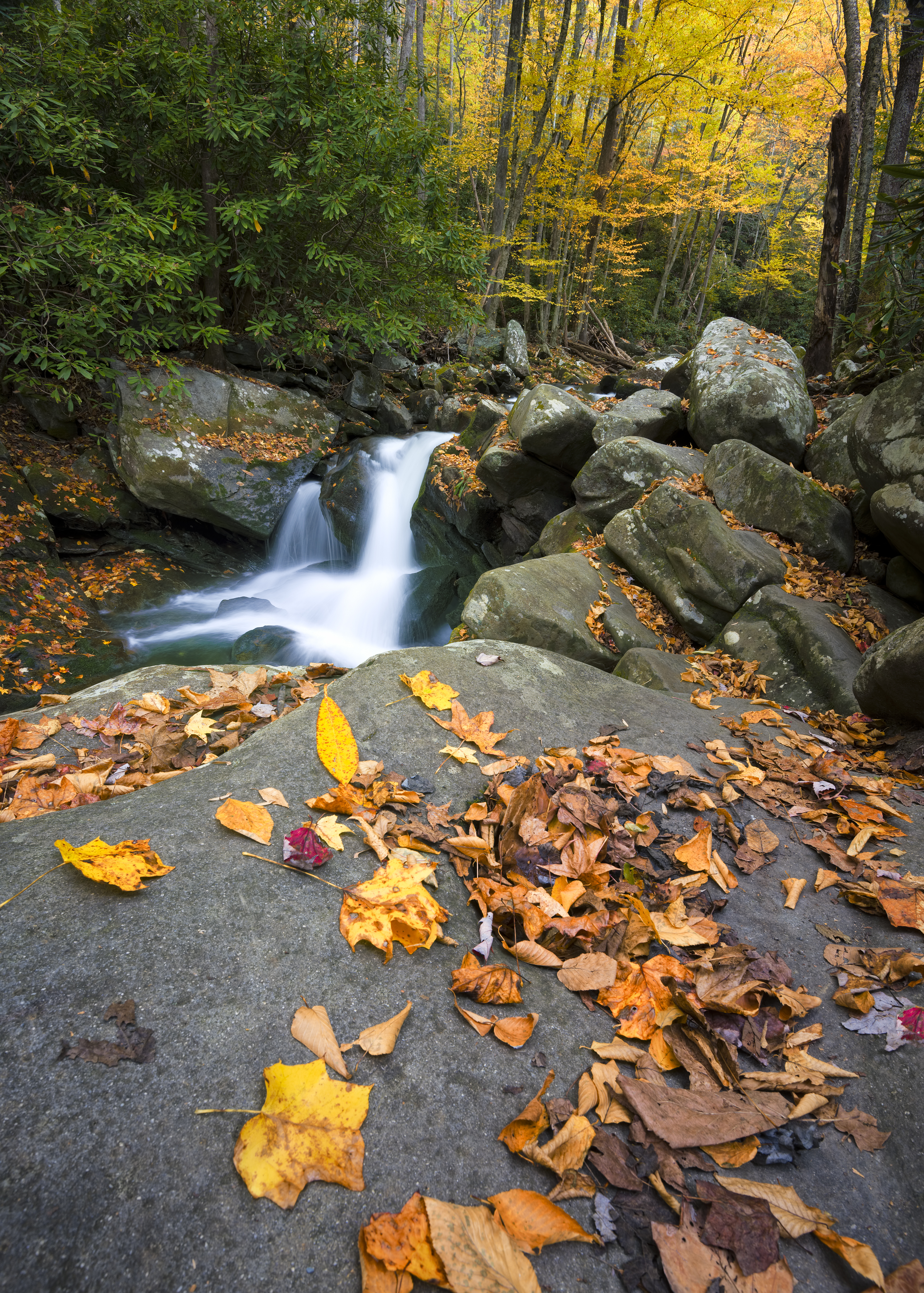 gatlinburg-mountain-stream.jpg
