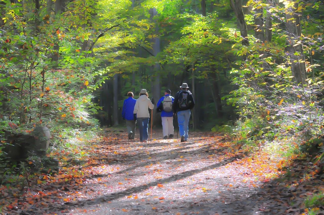 hiking-1232453_1280.jpg